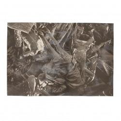 Fall (after Peter Paul Rubens)