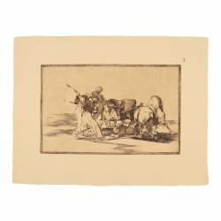 The Moors settled in Spain, giving up the superstitions of his Koran, adopted this art of hunting, and speared a bull