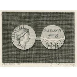 Palikano coin