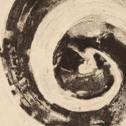Galaxy / Spiral