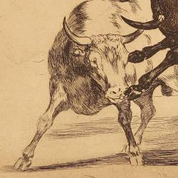 Ceballos riding another bull breaks short spears at the Madrid's bullring (Tauromaquia Plate 24)