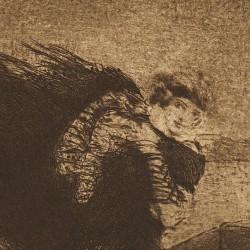 Venetian woman. Shawl to the air.