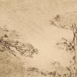 Wagnearian landscape.